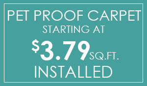 Pet proof carpet starting at $3.79 sq.ft. installed!