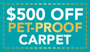 $500 off your purchase of pet-proof carpet at Gillespie's Abbey Carpet!